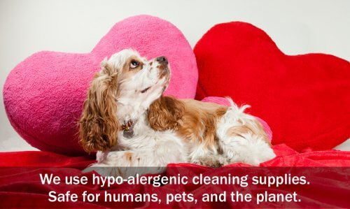 We use hypo-alergenic cleaning supplies. Safe for humans, pets, and the planet.